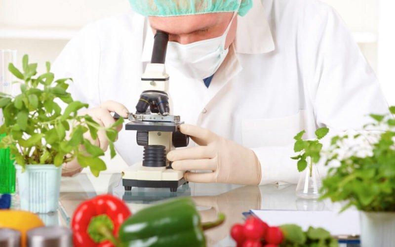Оценка системы безопасности пищевой продукции